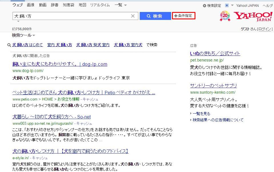 search engine3
